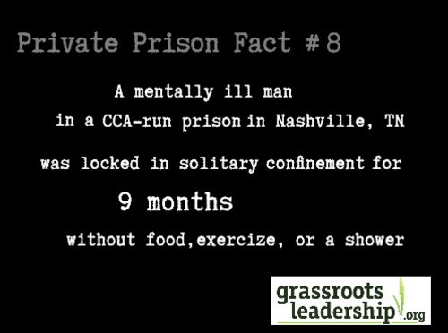 private prison fact