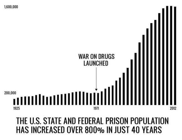 Image result for war on drugs mass incarceration
